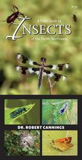 A Field Guide to Insects of the Pacific Northwest