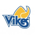 Large VIKES Sticker